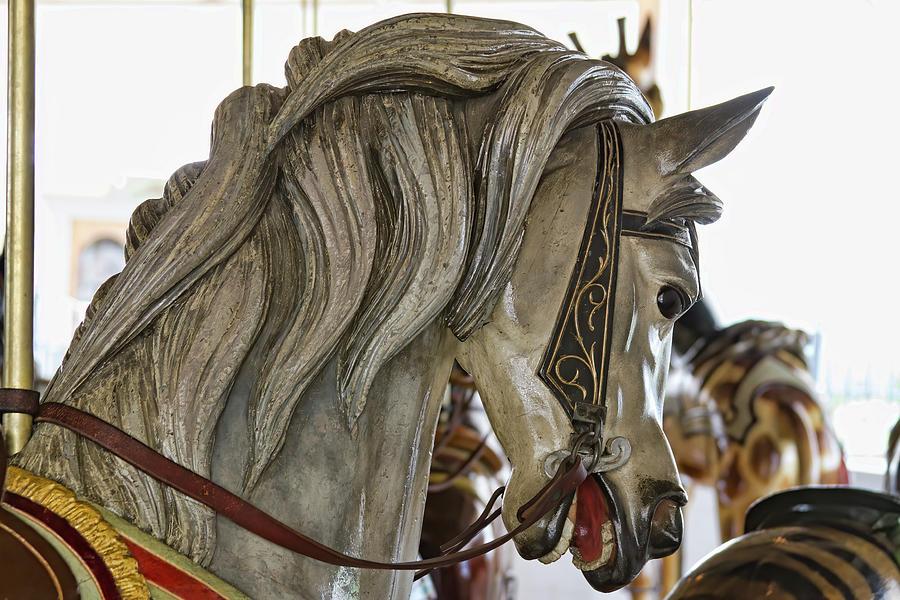 Carousel Pony Photograph by Alana Thrower