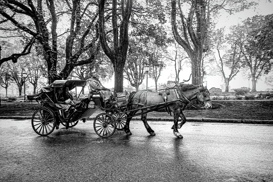 Carriage Ride in Black and White Series 0610 by Carlos Diaz