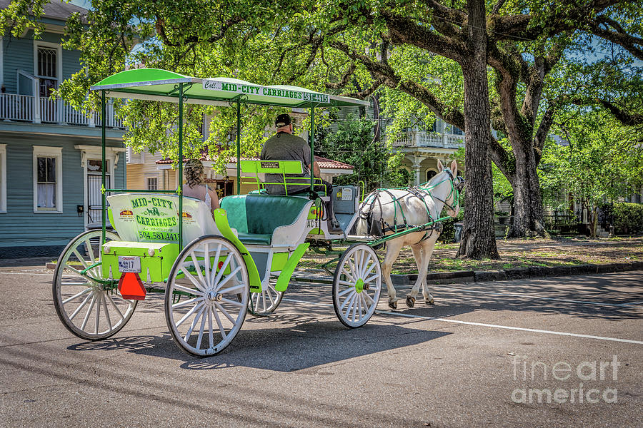 Carriage Ride on Esplanade Ave New Orleans by Kathleen K Parker