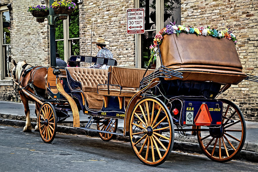 Carriage Rides by Lana Trussell