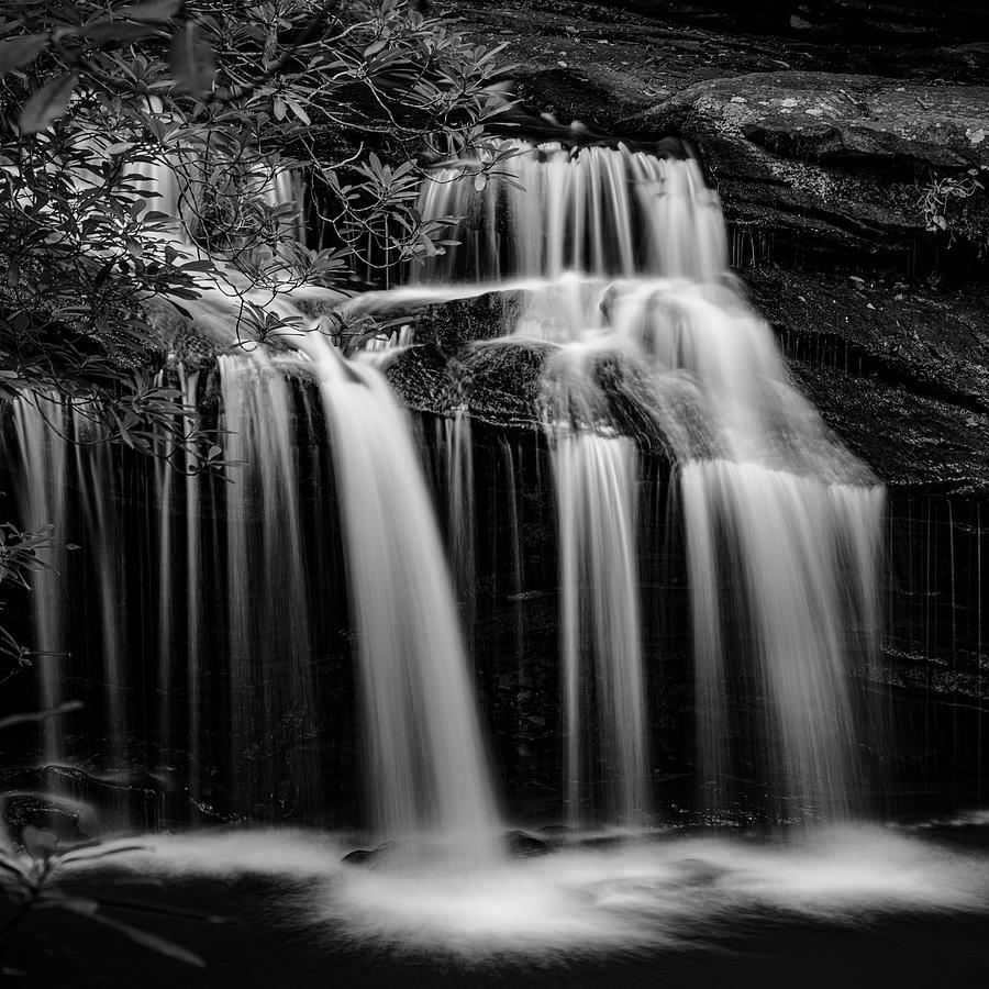 Carrick Creek Falls by Patrick M Lynch