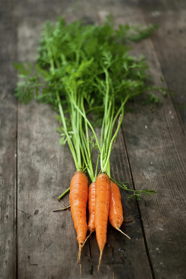 Carrot Photograph by Kemi H Photography
