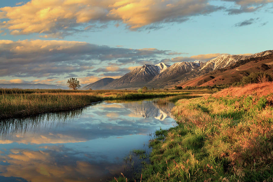 Carson Valley Sunrise by James Eddy