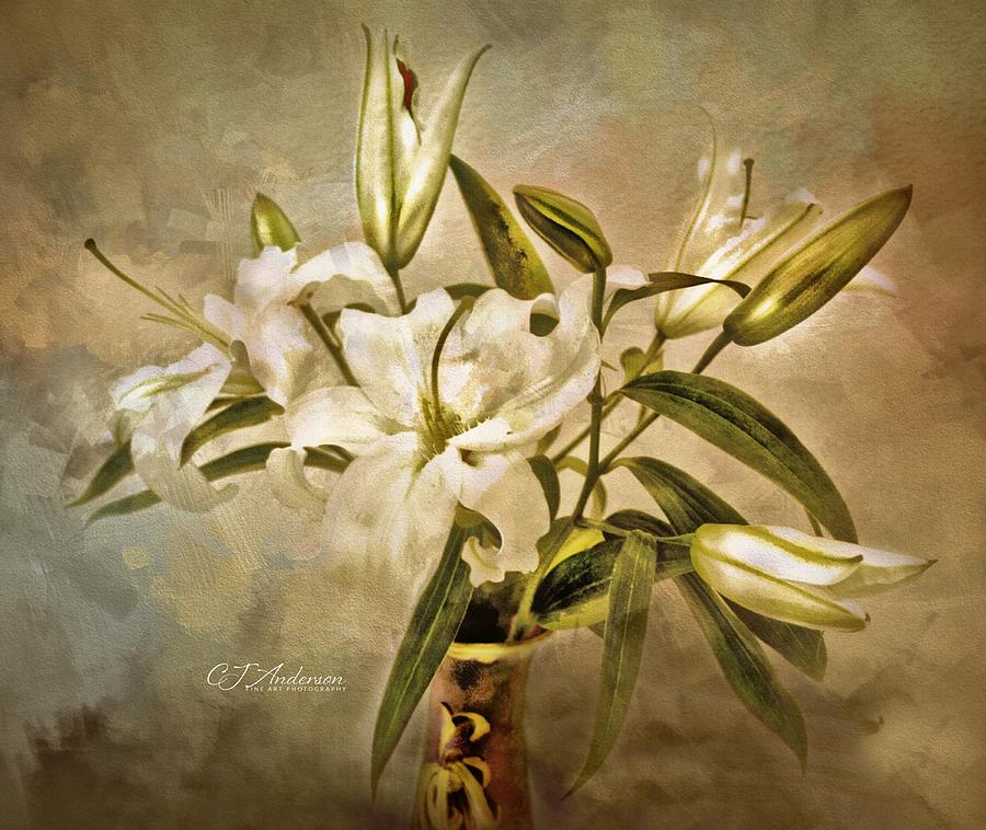 Casa Blanca Lilies Photograph
