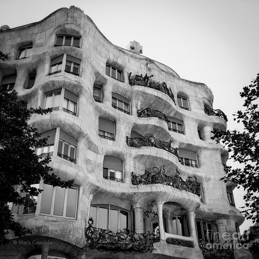 casa mila by Mary Capriole