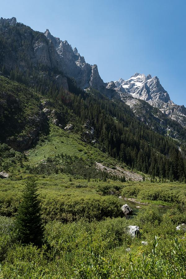 Cascade Canyon, Grand Teton by Michelle McConnell
