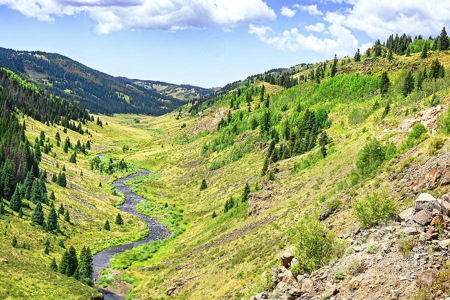 Cascade Creek by Susan Warren