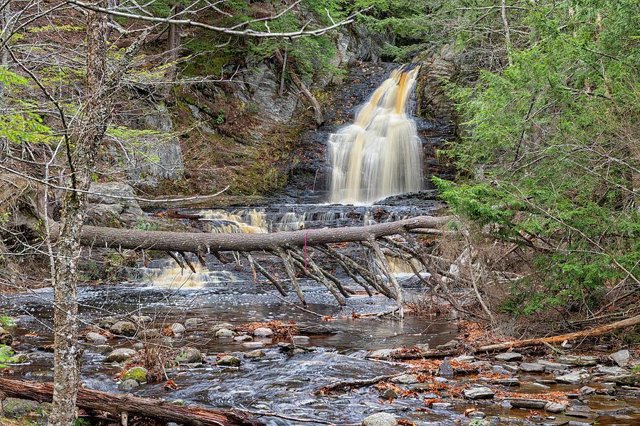 Cascade Falls by Bob Doucette