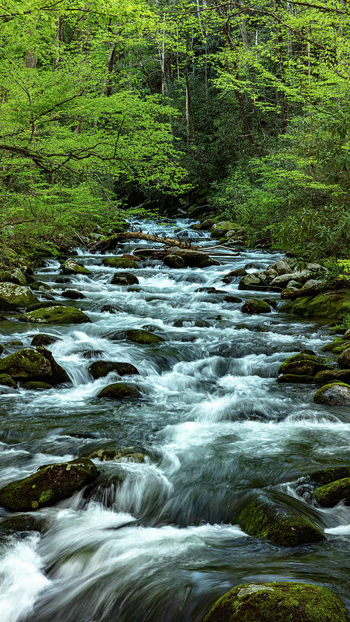 Cascades on the Roaring Fork River by Kelly Kennon
