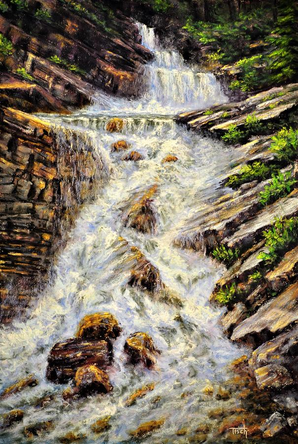 Cascading Creek by Lee Tisch Bialczak