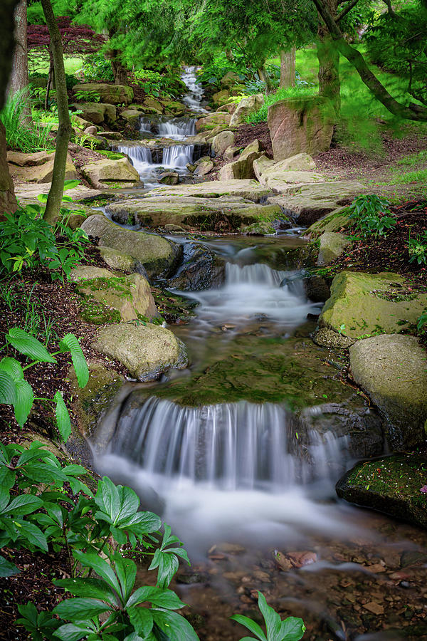 Cascading Stream by Tom Mc Nemar