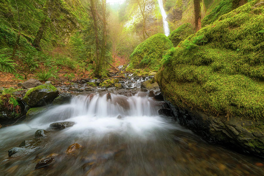 Cascading Waterfall at Starvation Creek State Park by David Gn