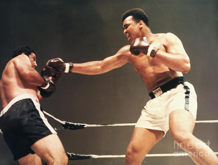 Cassius Clay Boxing Rocky Marciano Photograph by Bettmann