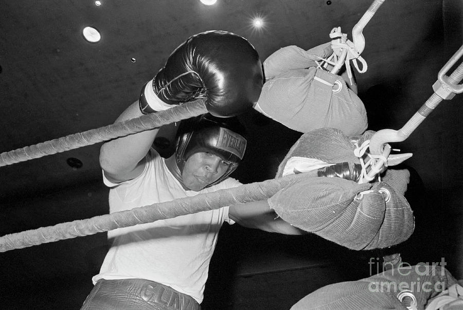 Cassius Clay Hangin On The Ropes Photograph by Bettmann