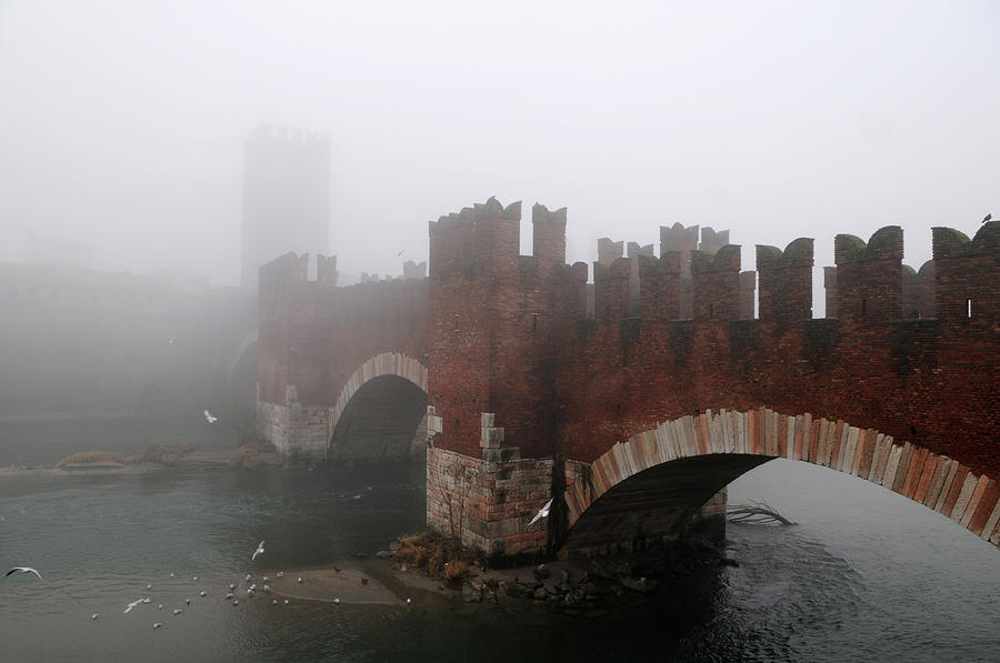 Castelvecchio Bridge Photograph by Stefano Zuliani Photo