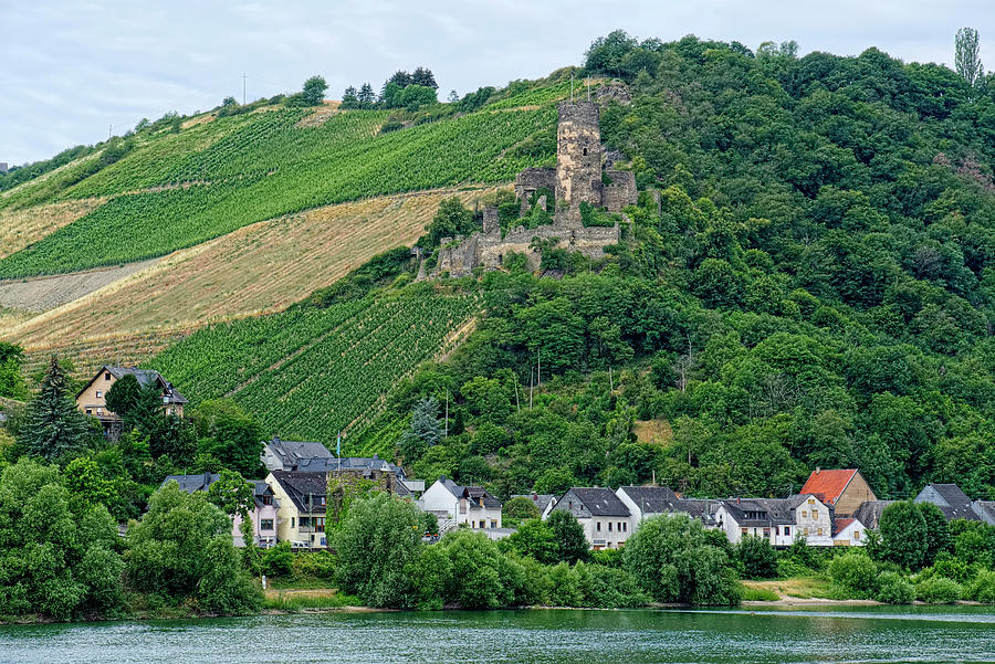 Castles Along the Rhine - Furstenberg Castle by Lucinda Walter
