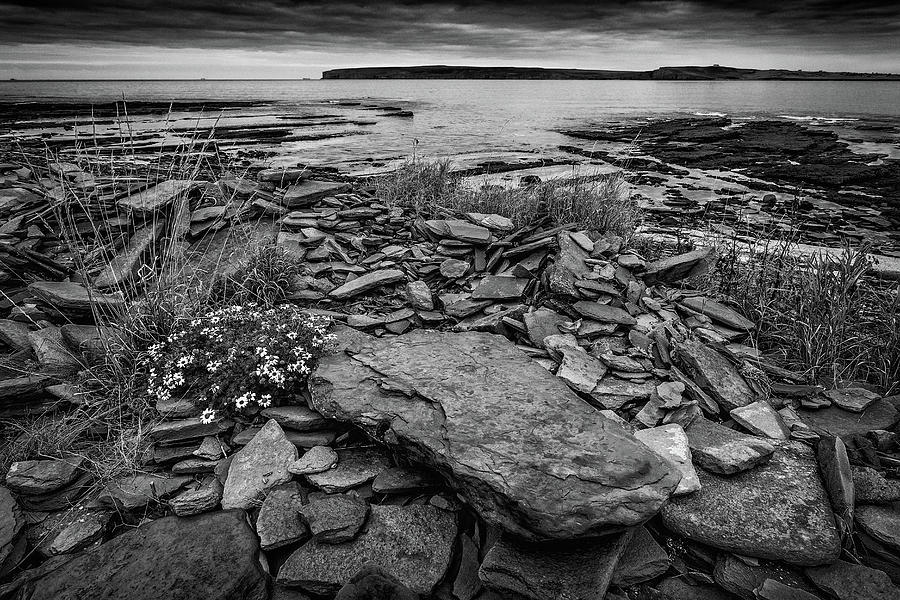 Castletown Beach Mono Photograph