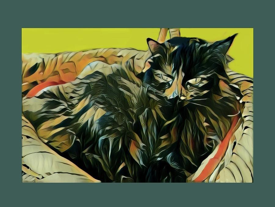 Cat in a Basket by Sarah Hanley