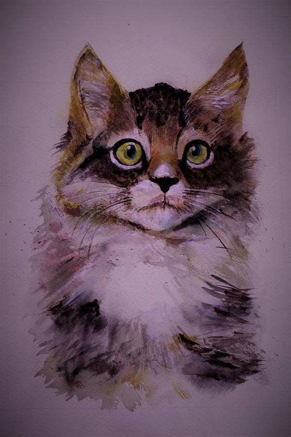 Cat Selfie by Khalid Saeed