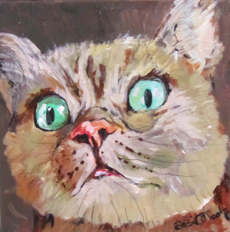 CAT What do you see  by Barbara O'Toole