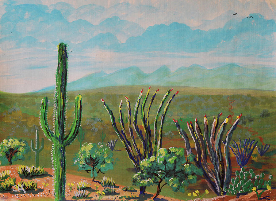 Catalina Mountains and Saguaro National Park Springtime Impressions by Chance Kafka