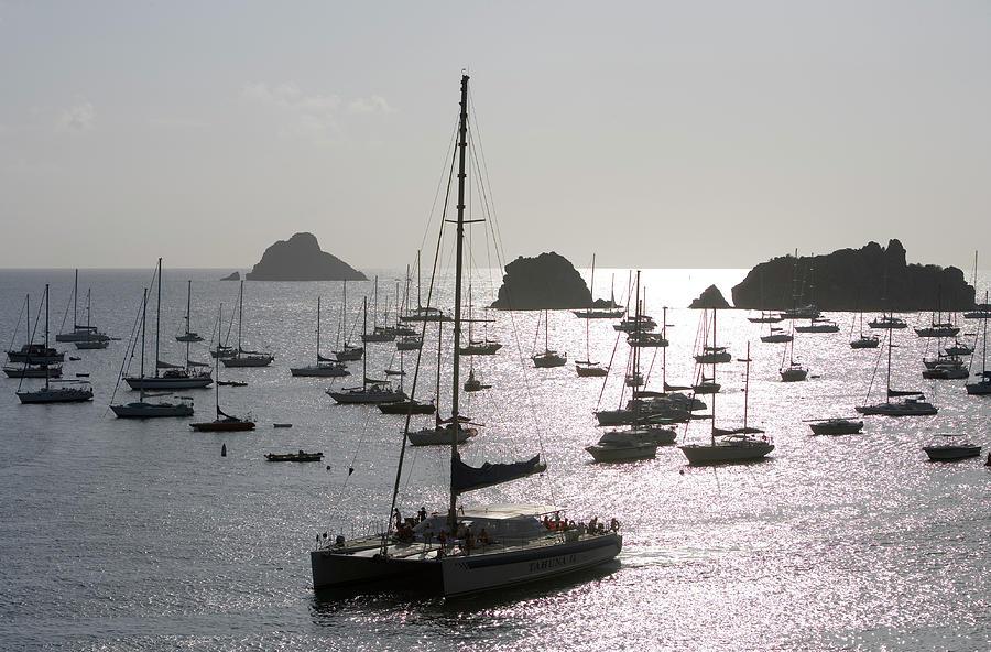 Catamaran And Yachts At Anchor, Near Photograph by Holger Leue