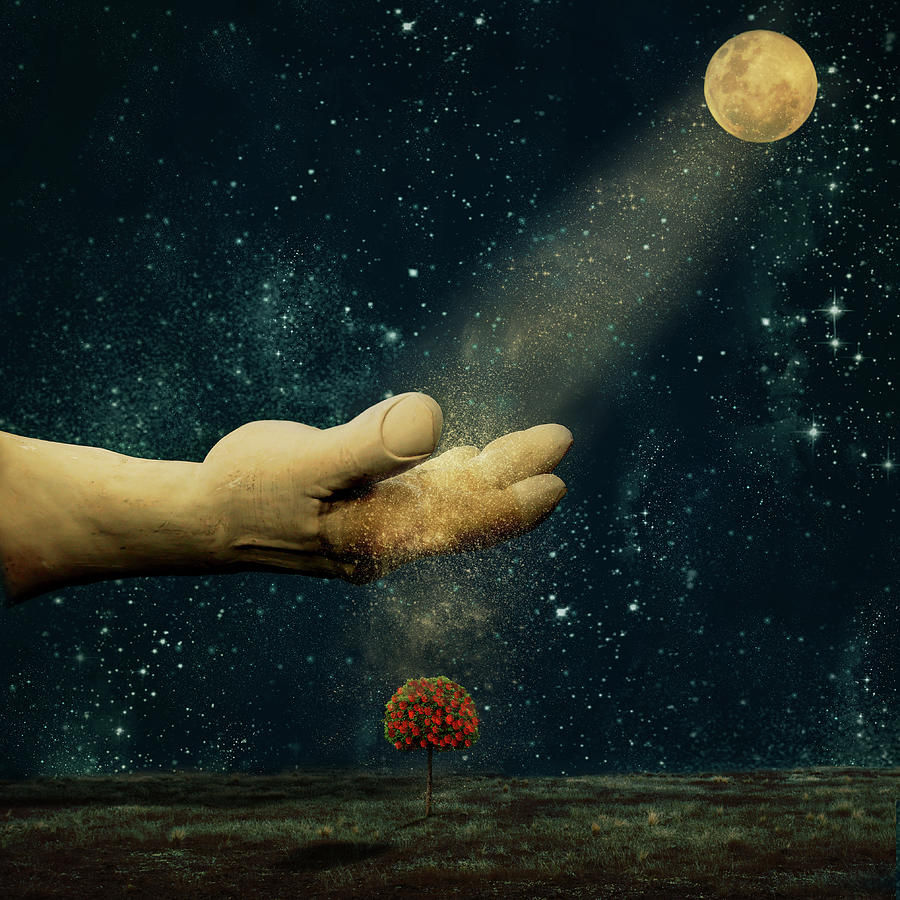 Catching Moon Dust Photograph by Jill Ferry
