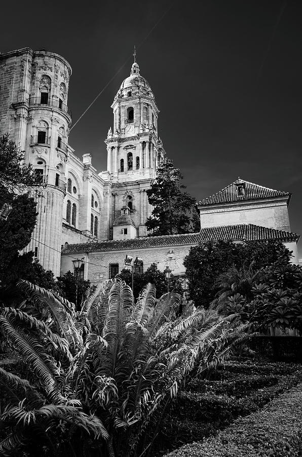 Cathedral Photograph - Catedral De Malaga Iv by Borja Robles