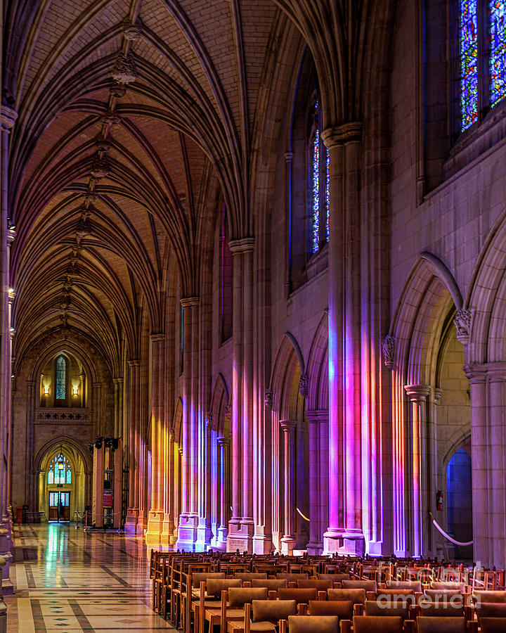 Cathedral Illumination by David Meznarich