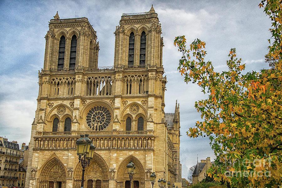 Cathedral Notre-Dame de Paris by Wayne Moran