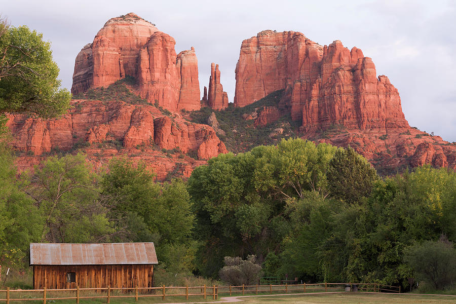 Cathedral Rock Looms Over Valley In Red Photograph by Win-initiative