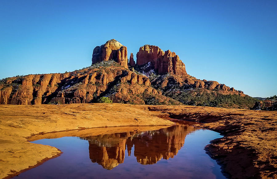 Cathedral Rock Reflection by Terry Ann Morris