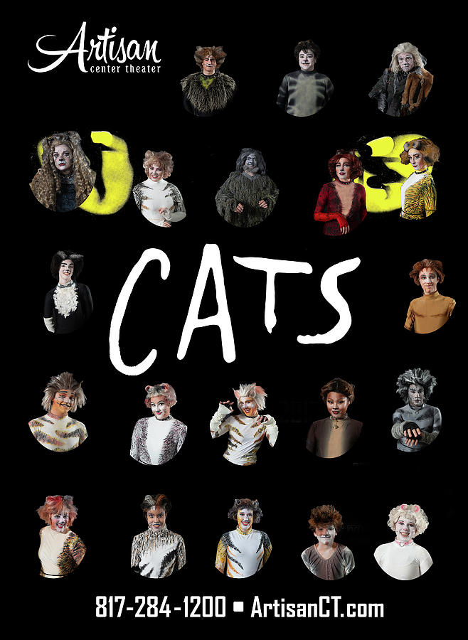 Broadway Photograph - Cats Poster 1 by Alan D Smith