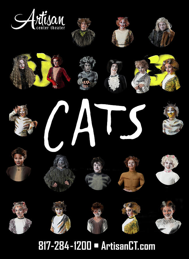 Broadway Photograph - Cats Poster 2 by Alan D Smith