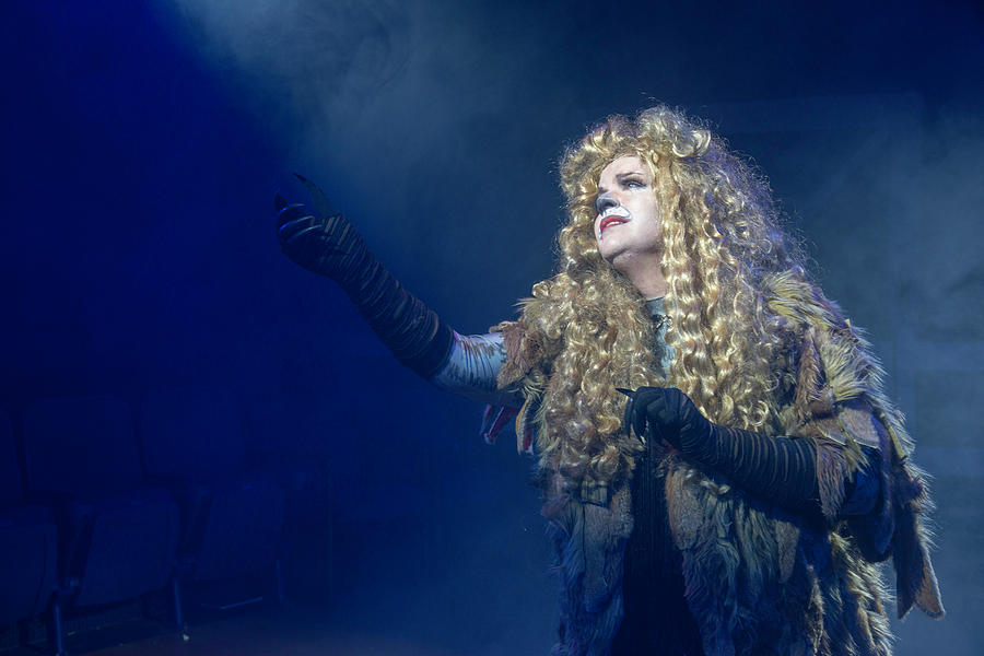 Broadway Photograph - CATS Publicity image  by Alan D Smith