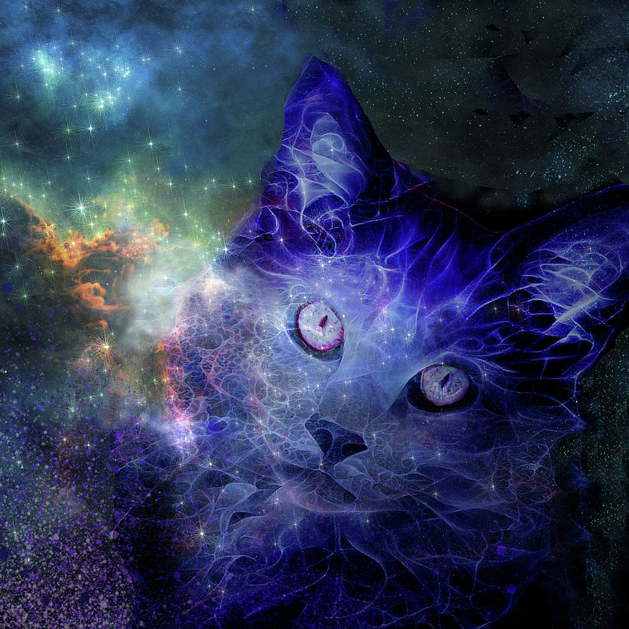 Cats Rule the Universe by Peggy Collins