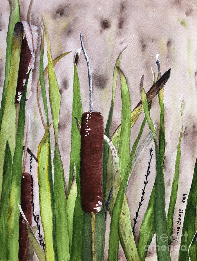 Cattails by Bonnie Young