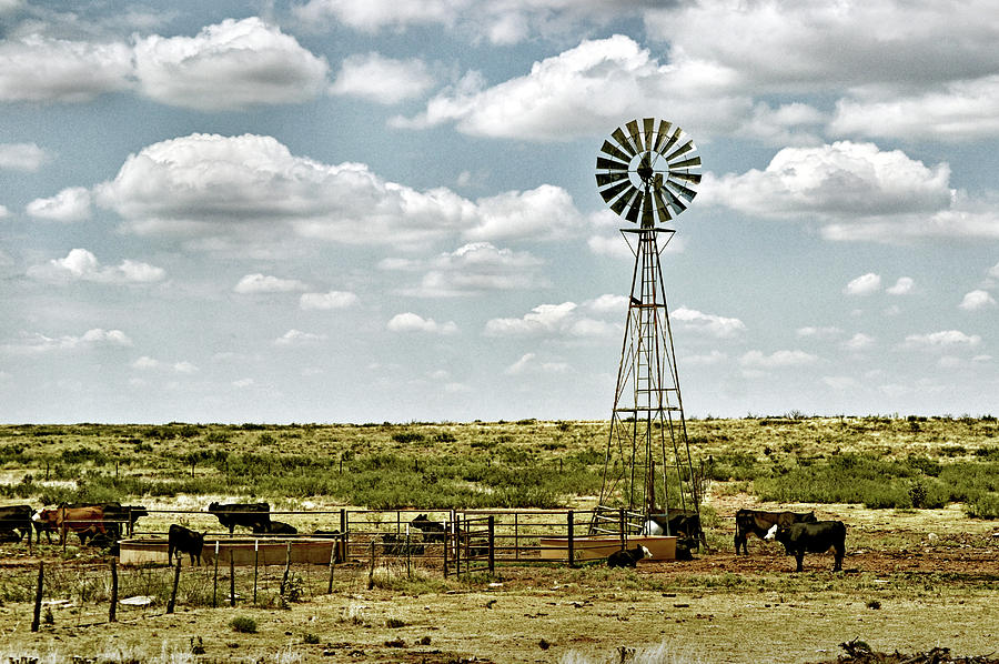 Cattle Ranch Watering Windmill by Bill Swartwout Fine Art Photography