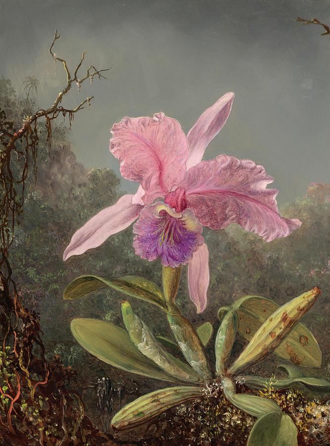 Martin Johnson Heade Painting - Cattleya Orchid, 1871 by Martin Johnson Heade