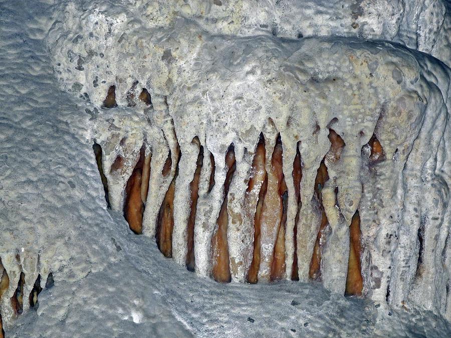 Cavern Druids  by Lynda Lehmann