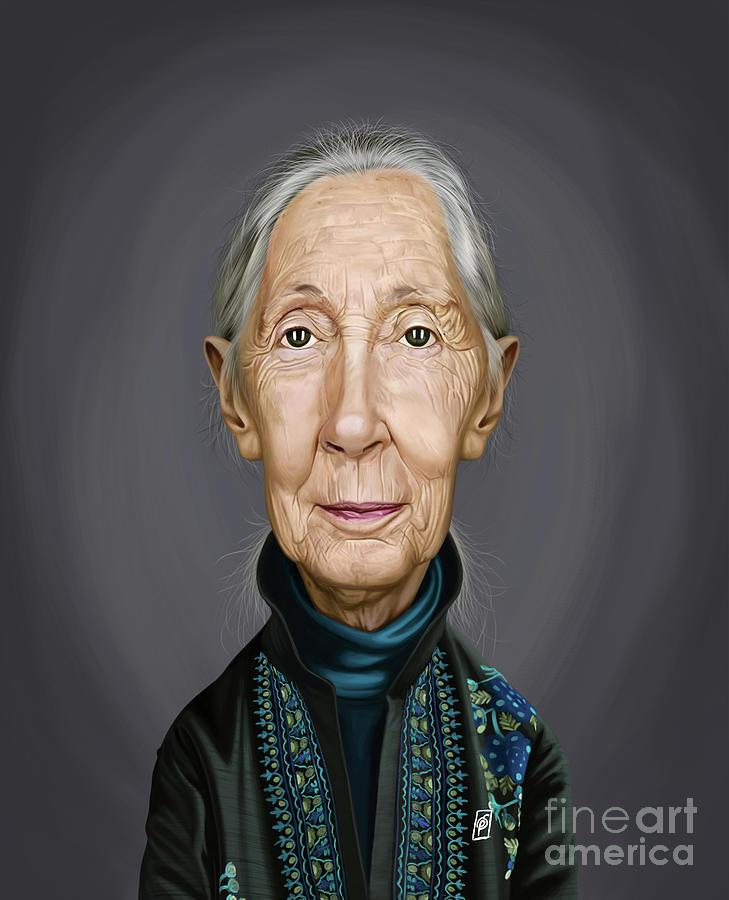 Celebrity Sunday - Jane Goodall by Rob Snow