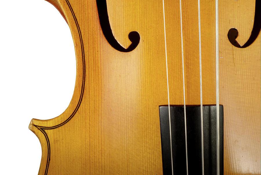 Cello Photograph by Hiob