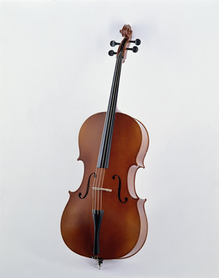 Cello Photograph by Howard Kingsnorth