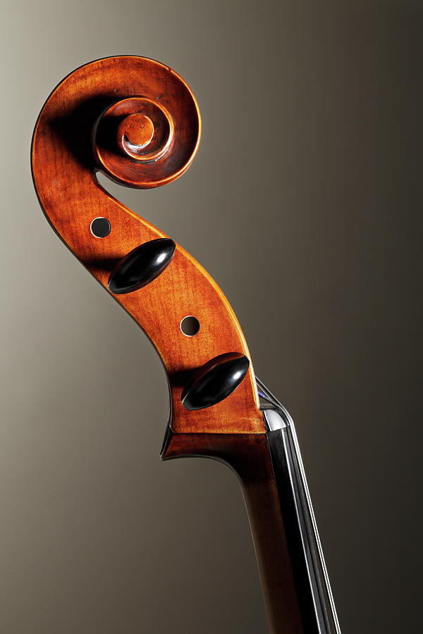 Cello Scroll Photograph by Dny59