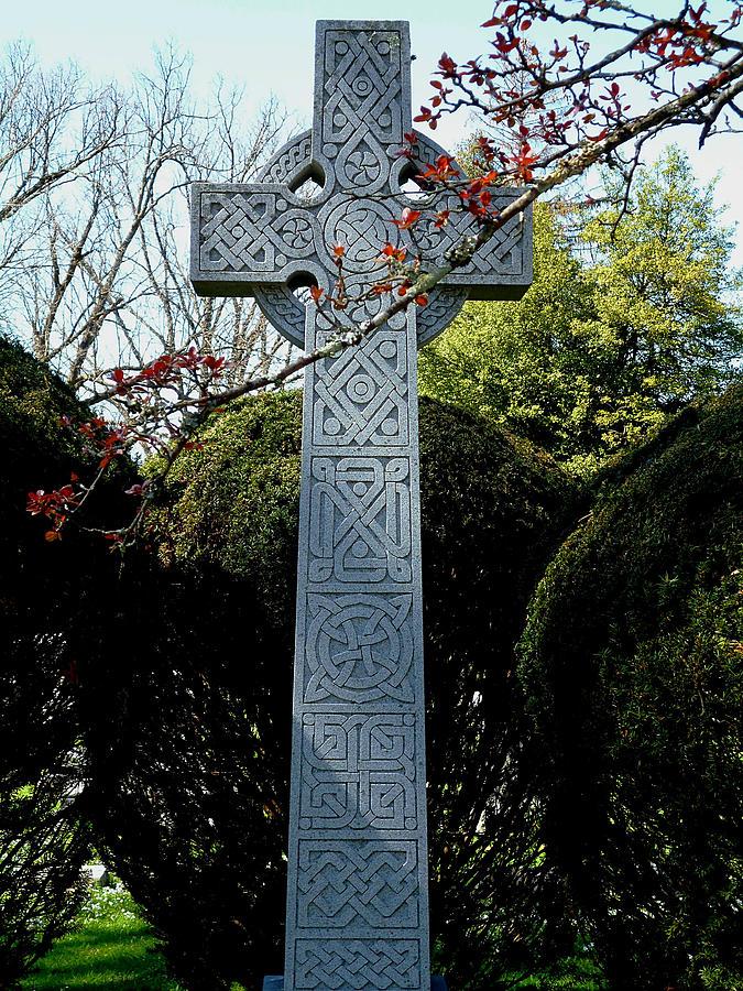 Celtic Cross Against Evergreen Hedge  by Michael McBrayer