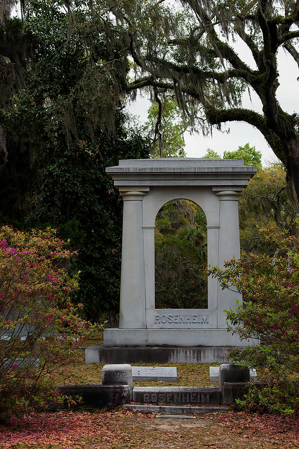 Cemetary Photograph - Cemetary In Georgia by Jon Glaser