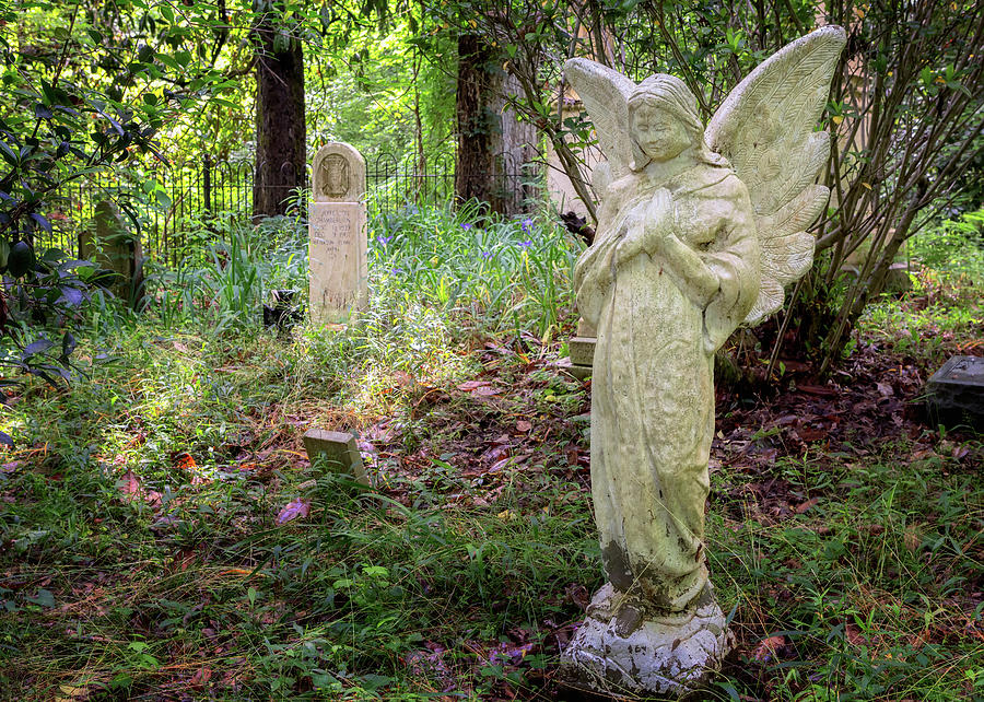 Cemetery Angel by Susan Rissi Tregoning