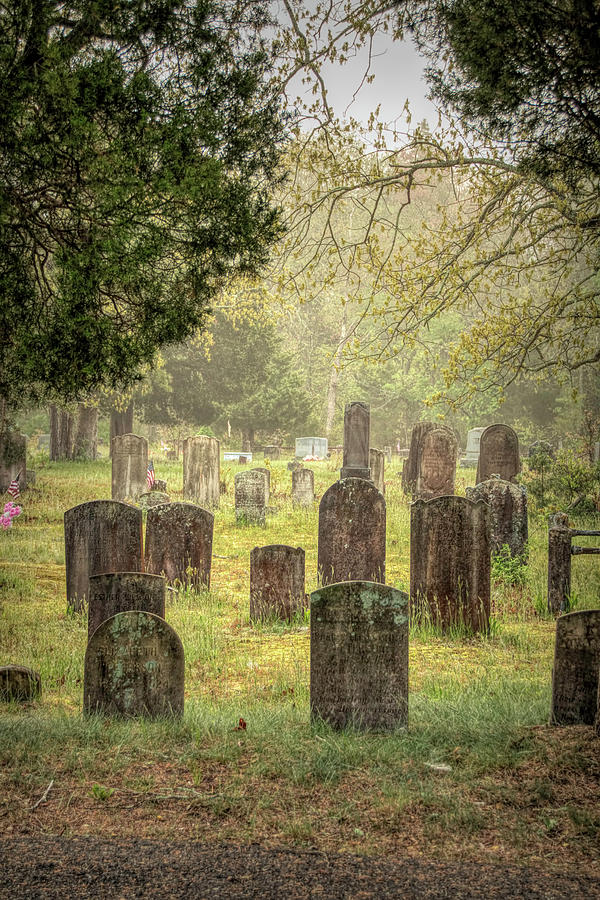 Cemetery In The Pines by Kristia Adams