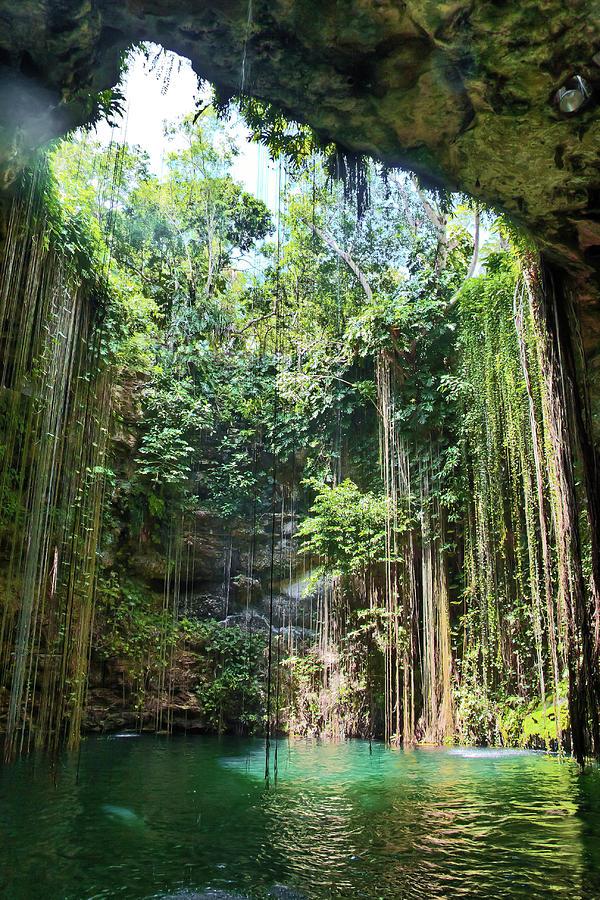 Cenote Ik Kil Photograph by Pola Damonte Via Getty Images