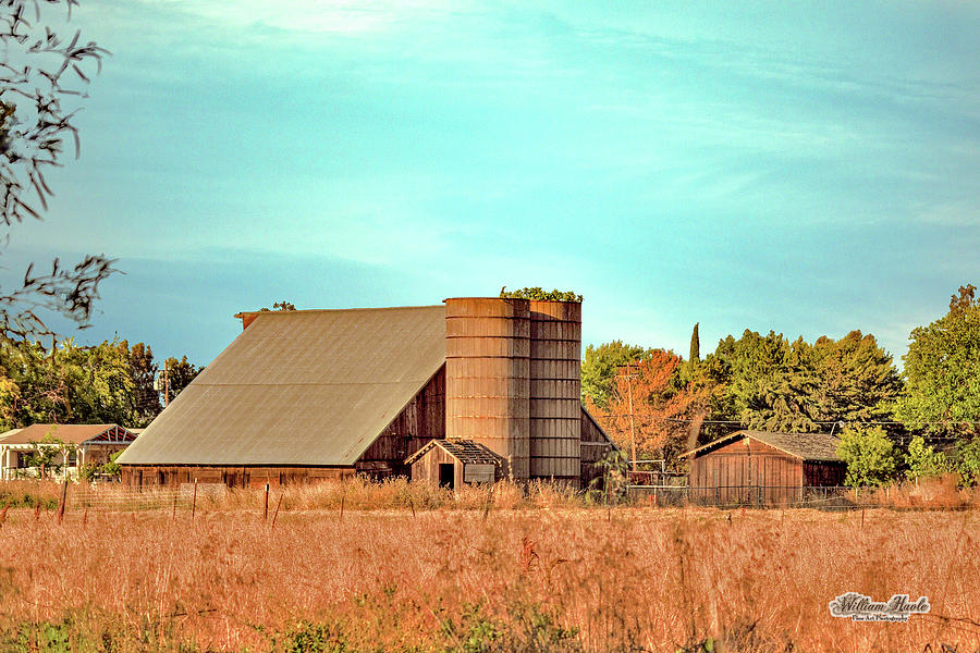 Central California Barn by William Havle